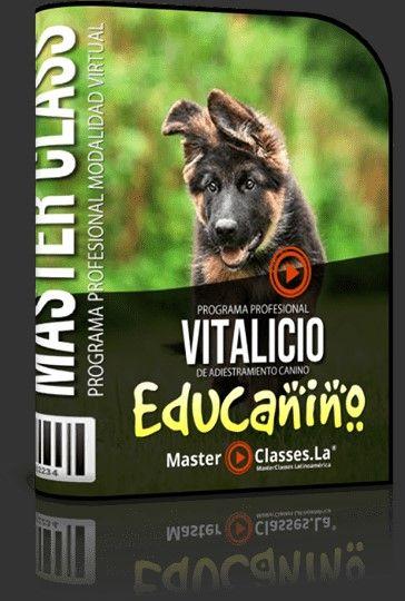Curso para educar a un perro