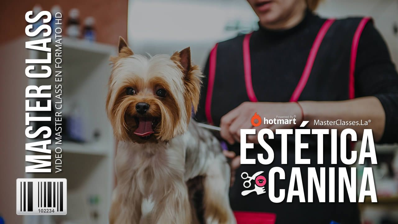 Curso de Estética Canina