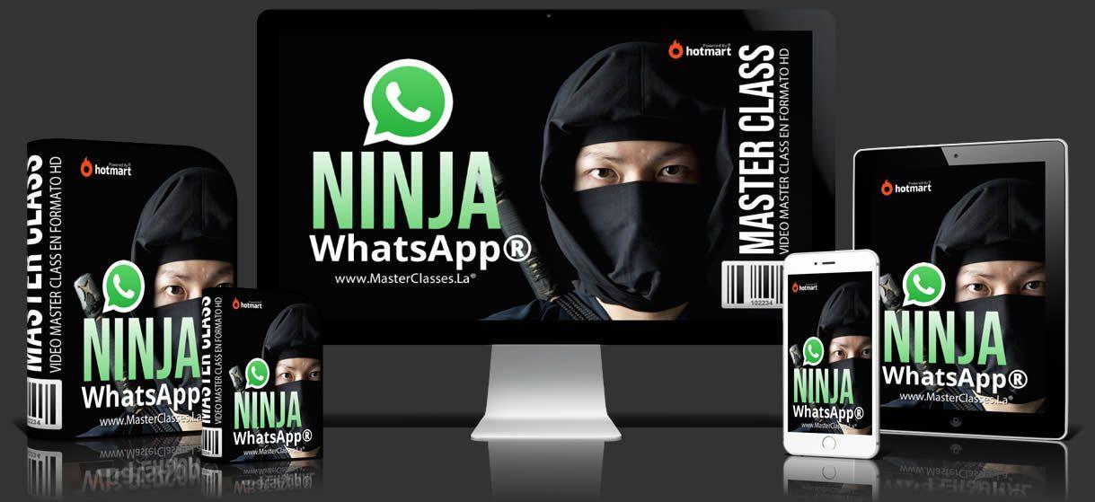 Negocios por WhatsApp