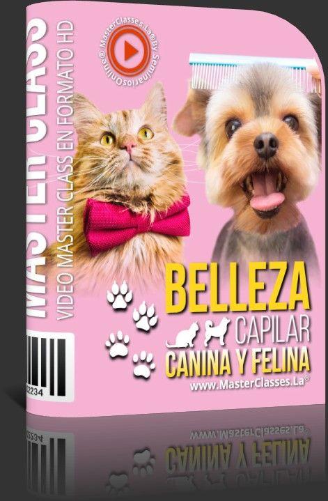 Belleza Capilar Canina y Felina