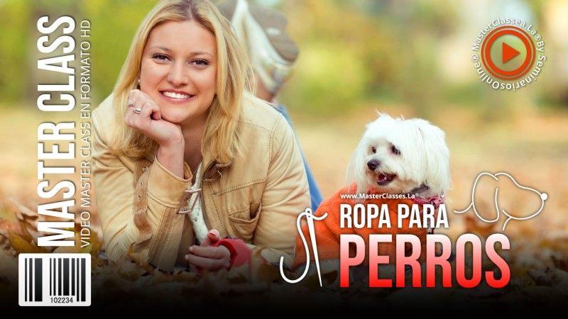 Curso Online de Ropa para Perros