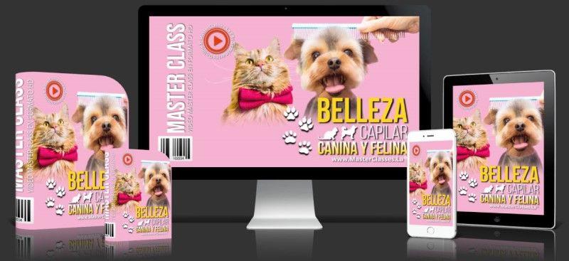 Curso de Belleza para Mascotas