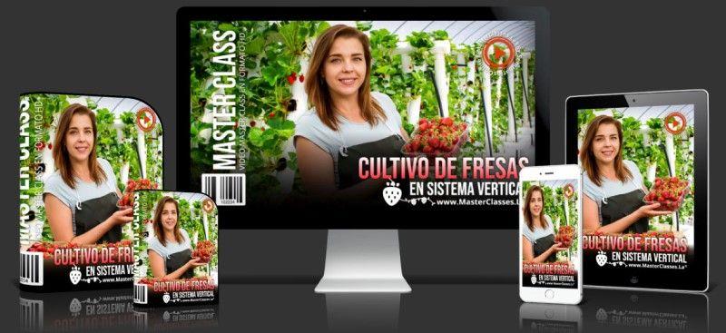 Curso de Cultivo de Fresas en Sistema Vertical