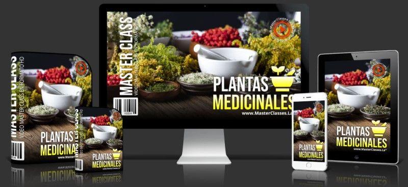 Curso de Plantas Medicinales