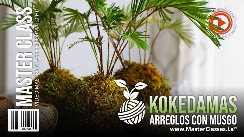 Curso Online de Kokedamas Arreglos Con Musgo