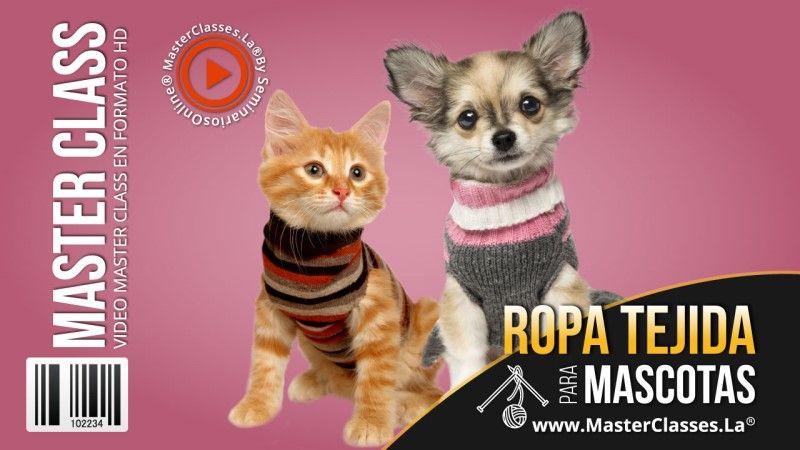 Curso de Ropa Tejida para Mascotas