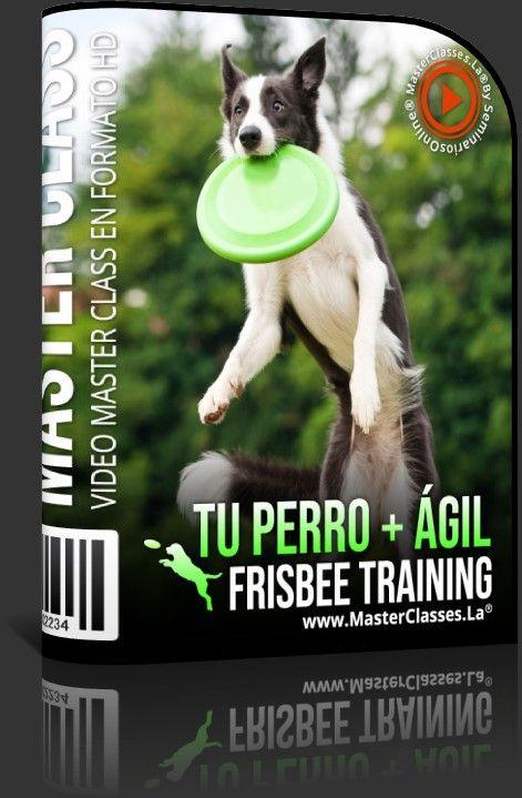 Tu Perro + Ágil - Frisbee Training