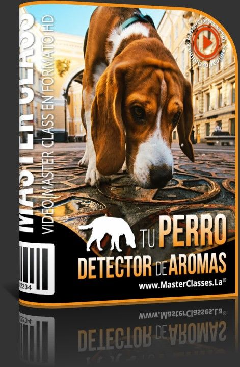 Tu Perro Detector de Aromas