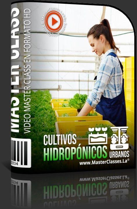 Cultivos Hidropónicos Urbanos