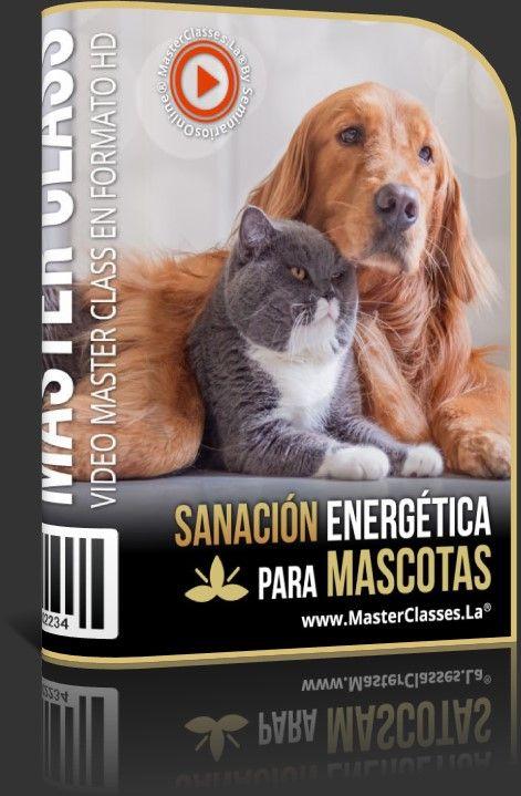 Sanación Energética para Mascotas