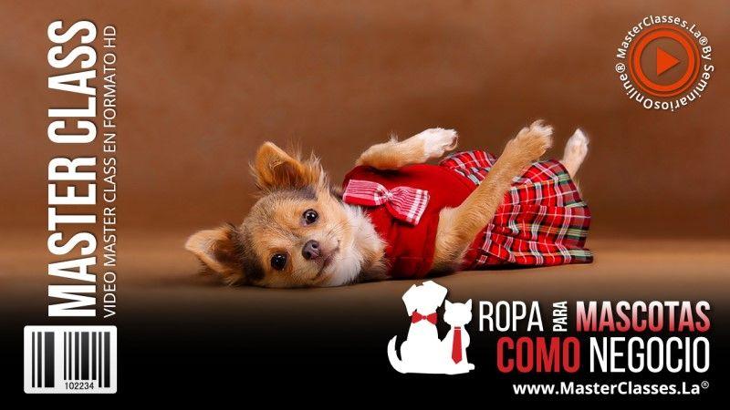 Curso Online de Ropa para Mascotas como Negocio