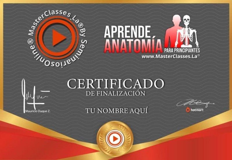 Certificado de Aprende Anatomía para Principiantes