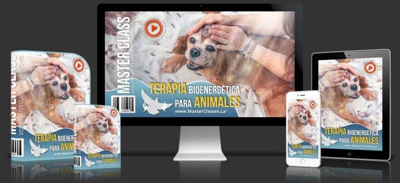 Aprende sobre Terapia Bioenergética para Animales