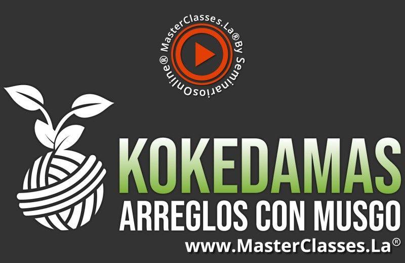 MasterClass Kokedamas Arreglos Con Musgo