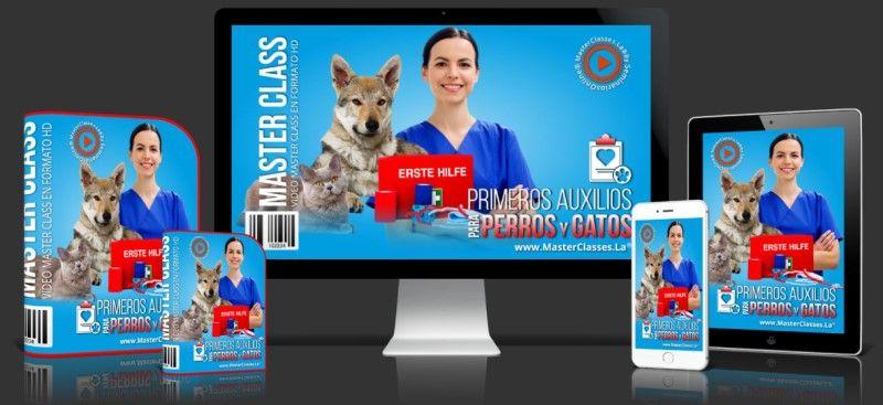 Aprende sobre Primeros Auxilios para Perros y Gatos